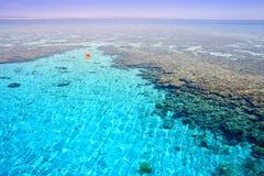 Barriera corallina (2). Mar Rosso. L'Egitto. Fotografia Stock Libera da Diritti