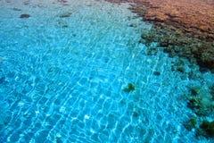 Barriera corallina (3). Mar Rosso. L'Egitto. Fotografia Stock