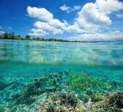 Barriera corallina con il banco di pesci che galleggia nel mare tropicale Immagini Stock