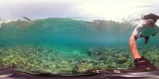 Barriera corallina e pesce tropicale vr360 archivi video