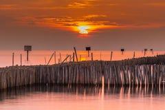 Barriera di bambù nel mare la penombra, Tailandia Fotografia Stock Libera da Diritti