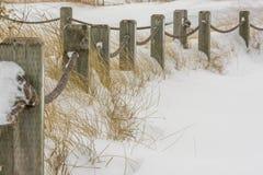 Barriera di protezione dell'erba nell'inverno Fotografie Stock Libere da Diritti