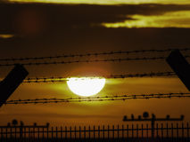Barriera di sicurezza al tramonto Fotografia Stock Libera da Diritti