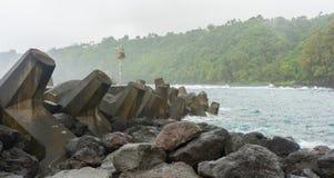 Barriera di tetrapode al punto di Laupahoehoe Fotografie Stock Libere da Diritti