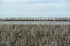 Barriera di Wave Fotografia Stock Libera da Diritti