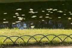 Barriera originale dei rami intorno allo stagno fotografie stock libere da diritti