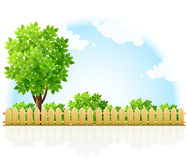 Barriered garden territory with tree and bushes Stock Photography
