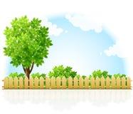 barriered krzaków ogrodowy terytorium drzewo Fotografia Stock