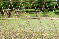 Barriers. Made from dry bamboo Royalty Free Stock Photos