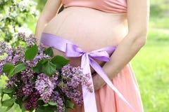 Barriga da mulher gravida Imagem de Stock