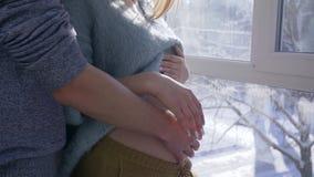 A barriga de acariciamento, a mamã e o paizinho dos pares grávidos mantêm suas mãos na barriga grande despida ao estar pela grand video estoque