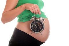 Barriga e despertador grávidos Imagem de Stock Royalty Free