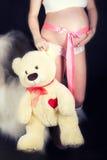 Barriga grávida com uma fita cor-de-rosa e um urso de peluche nas mãos de Fotos de Stock Royalty Free