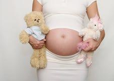Barriga grávida - menino ou menina? Imagem de Stock