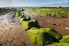 Barrika beach, bilbao royalty free stock photography