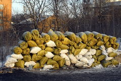 Barrikaderna i Kiev, Ukraina Royaltyfri Fotografi