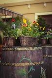 Barril con las flores en la calle Fotos de archivo libres de regalías