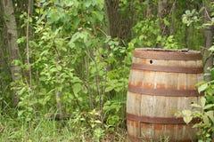 Barril de madera antiguo dejado en un bosque Fotografía de archivo