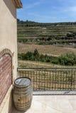 Barril de vino en el fondo del valle de viñedos y de montañas foto de archivo