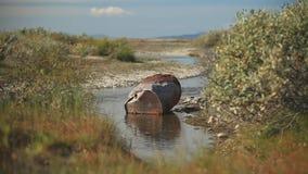 Barril oxidado en el río almacen de video