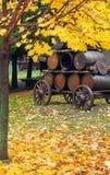 Barriles de cerveza en la caída Fotos de archivo libres de regalías
