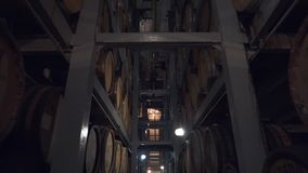 Barriles de coñac, de vino o de whisky Extracto de brandy en barriles del roble Almacén del alcohol Centenares de barriles en almacen de video
