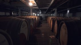 Barriles de co?ac, de vino o de whisky Extracto de brandy en barriles del roble Almac?n del alcohol Centenares de barriles en almacen de video