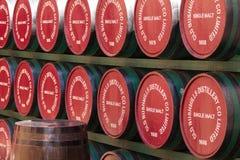 Barriles de madera del whisky de Bushmills. Irlanda fotografía de archivo libre de regalías