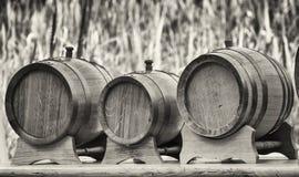 Barriles de madera viejos del aceite Imagen de archivo libre de regalías