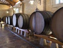Barriles de vino - Bodega español - España Foto de archivo