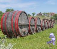 Barriles de vino de madera Fotografía de archivo