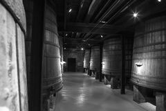 Barriles de vino del roble, La Rioja Imágenes de archivo libres de regalías