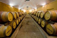 Barriles de vino en el lagar Foto de archivo