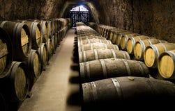 Barriles de vino en sótano Imágenes de archivo libres de regalías