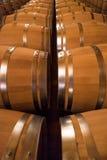 Barriles de vino en vino-cámara acorazada Imagen de archivo libre de regalías