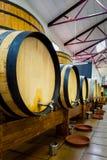 Barriles de vino grandes y pequeños Fotografía de archivo