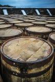 Barriles del whisky - primer Imagenes de archivo