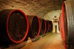 Barriles en un vino-sótano de Transilvania Imágenes de archivo libres de regalías