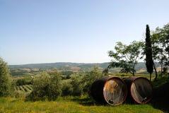 Barriles para el vino de Chianti fotografía de archivo libre de regalías