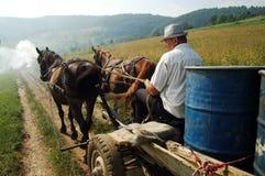 Barriles que llevan del campesino en un carro conducido caballo Foto de archivo libre de regalías