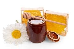 Barrilete con el cazo de la miel, del panal, madera y la margarita aislados Imágenes de archivo libres de regalías