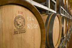 Barrique barrels in wine cellar stock photography