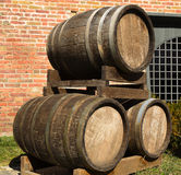 Barriques Royalty Free Stock Photo