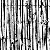 Barrière d'acacia Photographie stock libre de droits