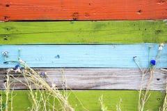 Barrière en bois colorée avec l'herbe et les fleurs Photos libres de droits