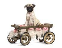 Barro amasado en un carro de madera con la almohada y las plumas Imagenes de archivo