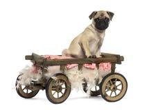 Barro amasado en un carro de madera con la almohada y las plumas Fotos de archivo