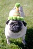 Barro amasado que lleva un sombrero del cumpleaños Foto de archivo libre de regalías