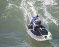 Barro amasado que practica surf Foto de archivo libre de regalías