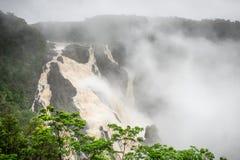 Barron понижается во время сезона дождей стоковое изображение rf